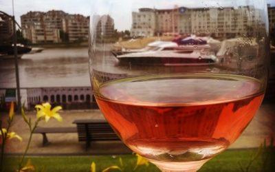 La mirada del vino en Argentina